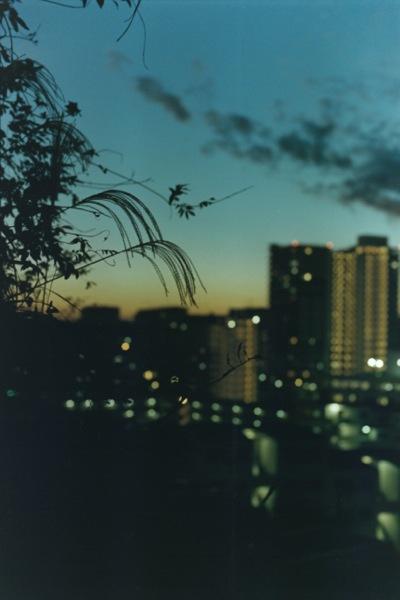 ©Kumiko Sanae