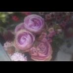 ks_flower_002