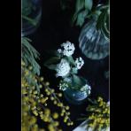 ks_flower_016